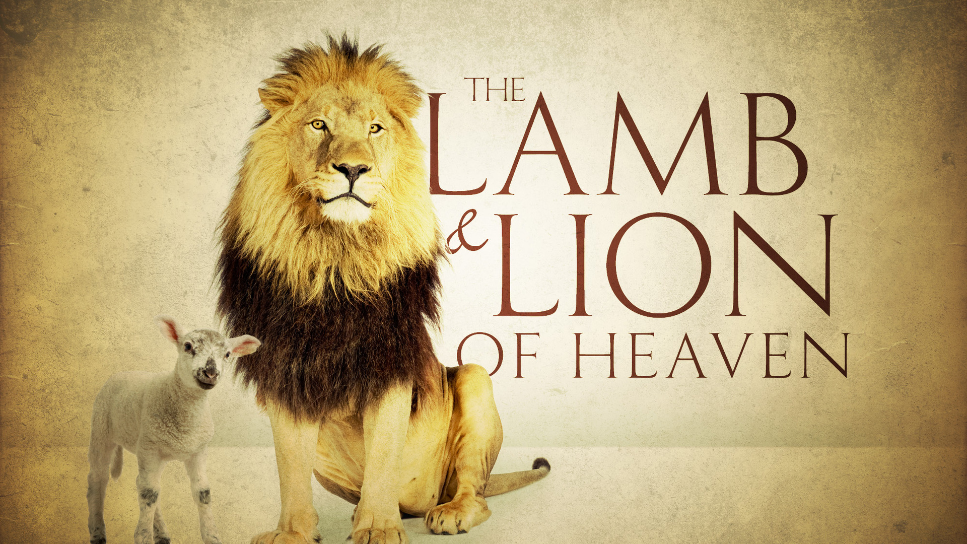 Lamb and Lion of Heaven
